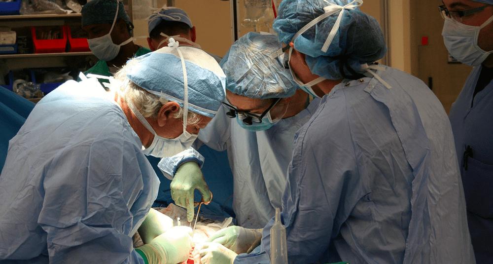 alea-quiz-en-quelle-annee-joseph-murray-realisa-t-il-la-premiere-transplantation-renale-reussie-au-monde